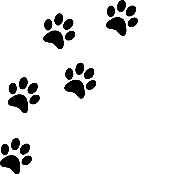 Cat Paw Prints Paw Print Clip Art Cat Paw Print Cat Paw Drawing