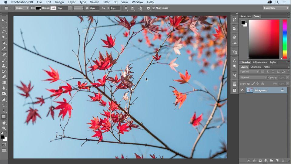 Photoshop Cc Essential Training 2015 Lynda Com Photoshop Photoshop Tutorial Design Tutorials