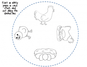 Life cycle craft and coloring page Preschool Activities