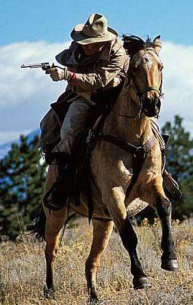 Weekend horseback, cowboy camp at Colorado's Bear Basin Ranch.  Cattle Drive, Range Ride, Roundup, Cow Camp, Team Cow Sorting, Ranch Rodeo and Cowboy Aciton : $500 (June-September)