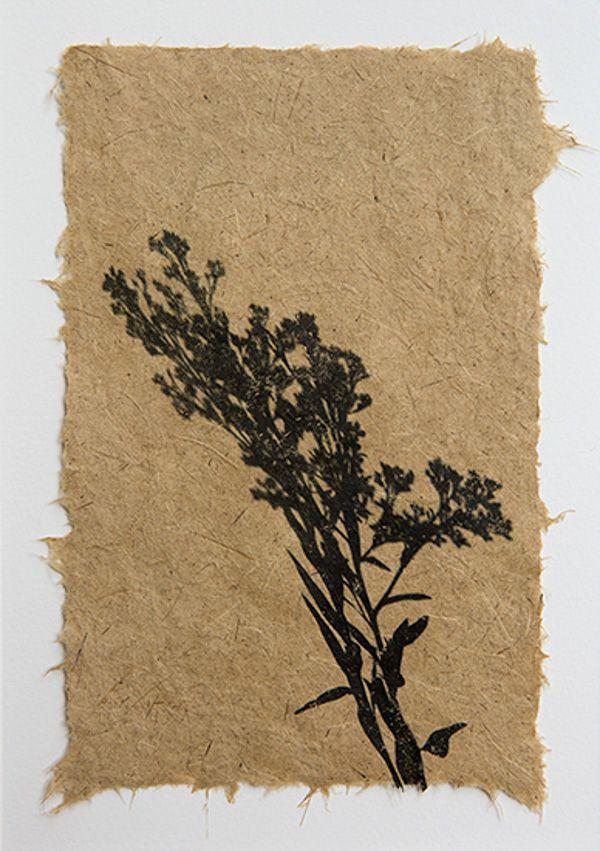 Art Handmade Paper Invasive Plants New Photographs By Jane Kramer Paperslurry Textured Paper Art Handmade Paper Burnt Paper
