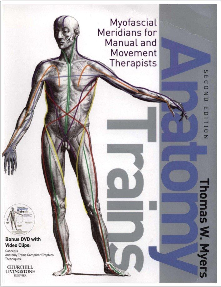 Anatomy Trains by Thomas W. Myers Textbook | Pwrplay\'s Online Palace ...