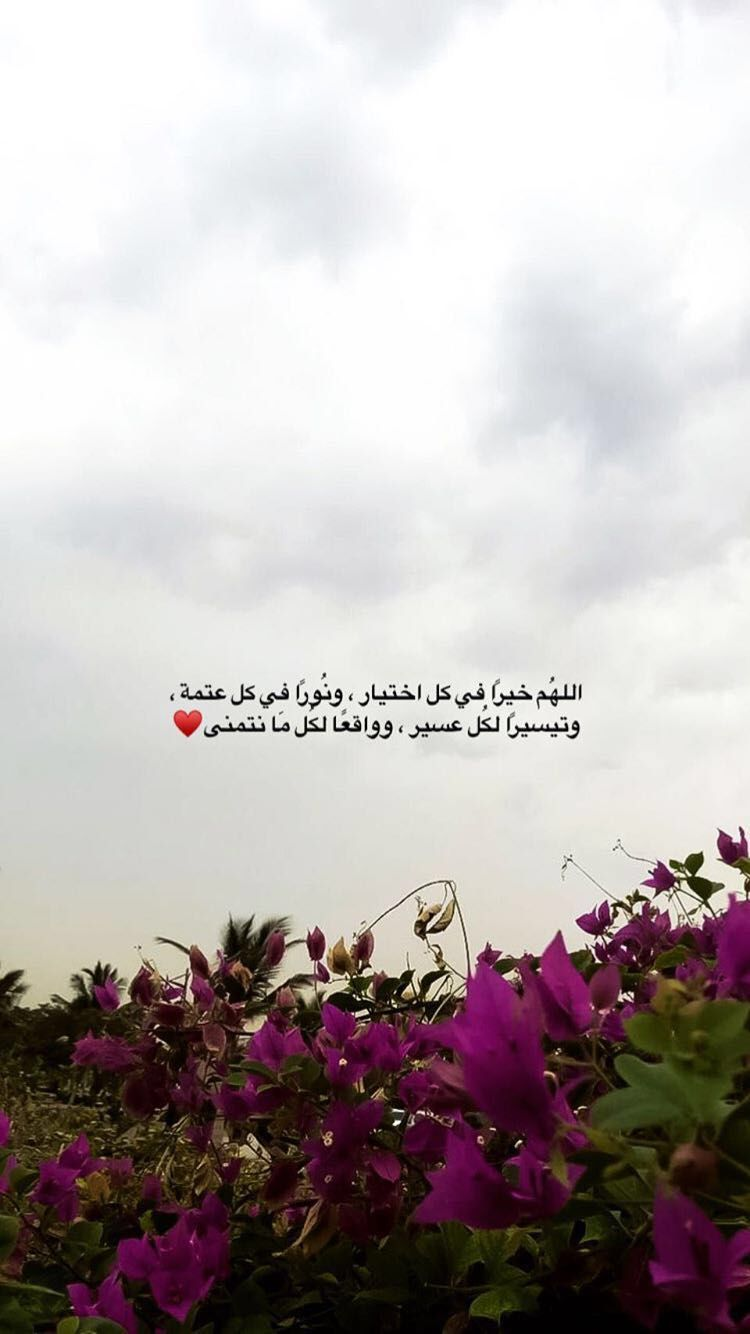 Pin By Walaa Salah On عبارات Work Quotes Inspirational Cover Photo Quotes Funny Arabic Quotes