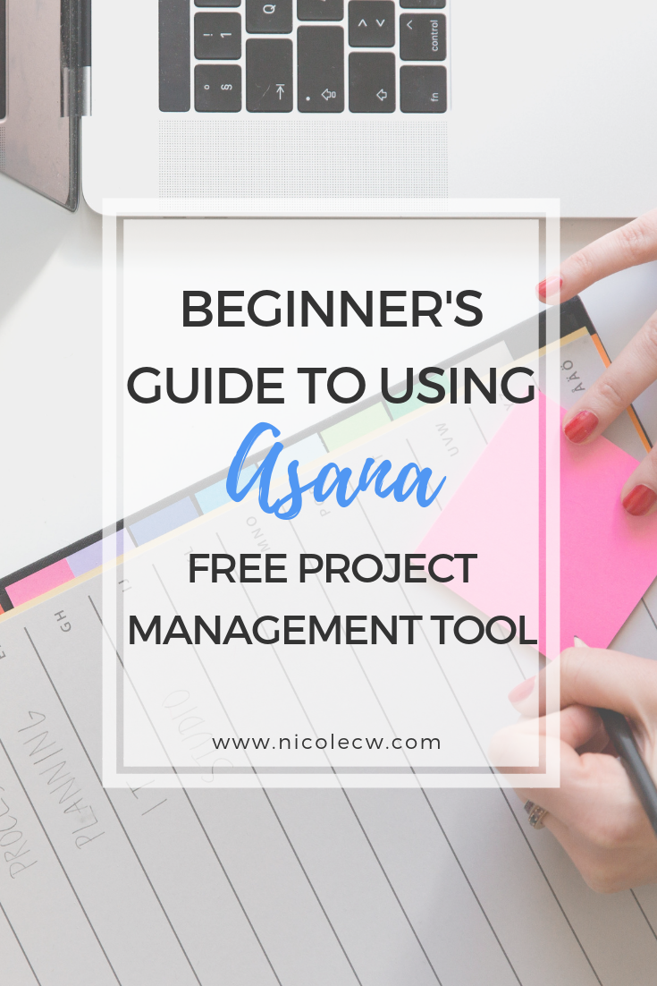 Beginner s Guide To Using Asana Free Project Management Tool