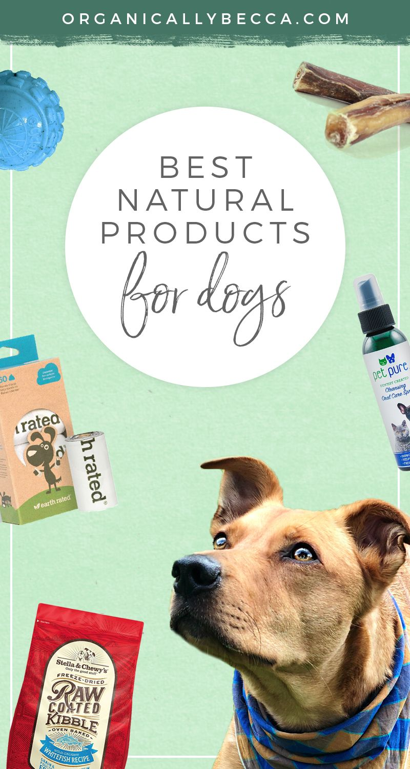 Organically Dexter Best Natural Eco Friendly Products For Dogs