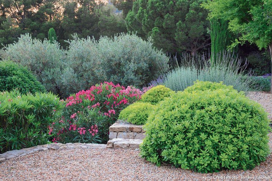 Un Jardin En Terrasses Sur La Mediterranee Terrasse Jardin Les Plus Beaux Jardins Jardin Mediterraneen