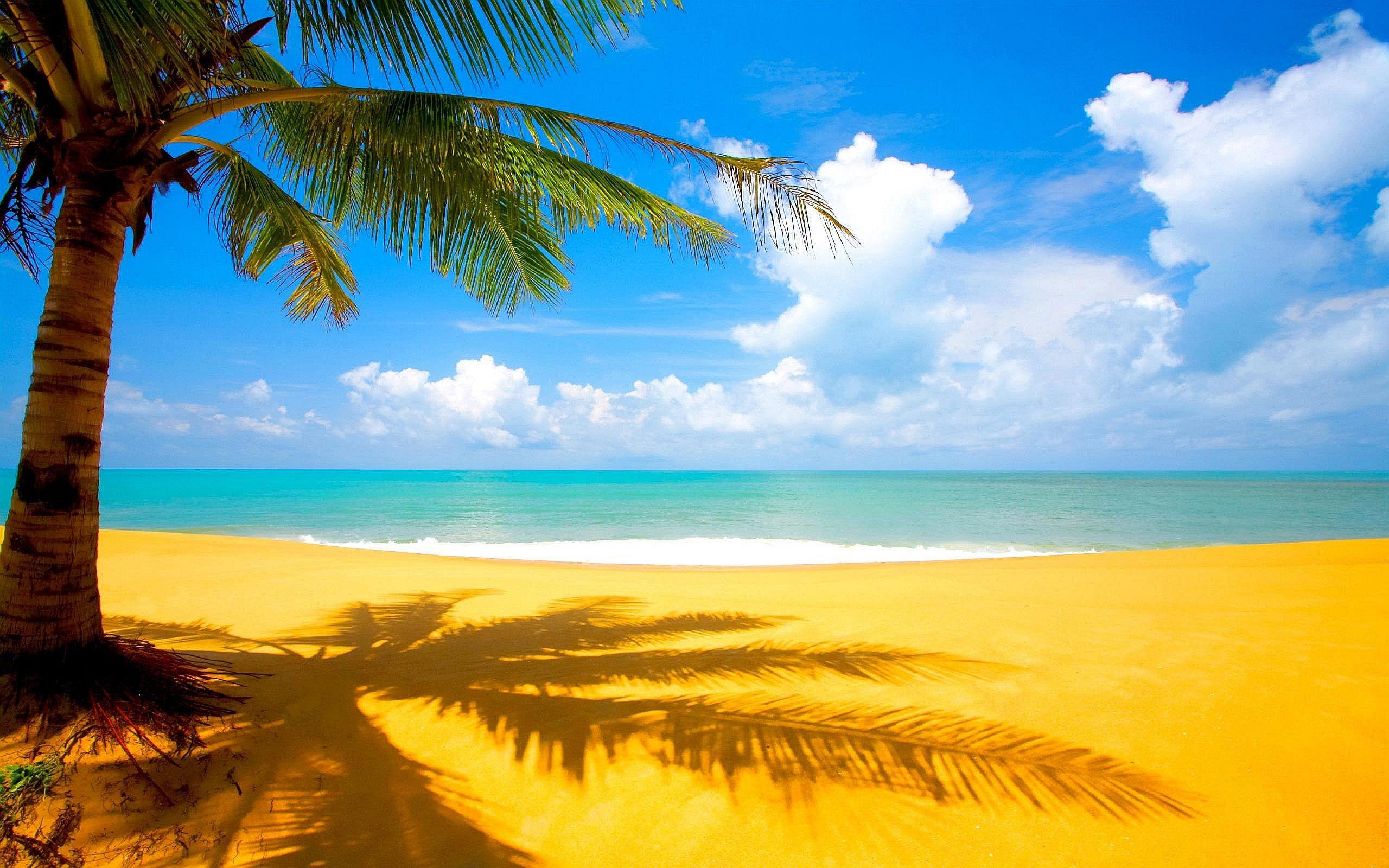 Beach Hd Desktop Wallpaper Picvenue Hd Wallpapers Wallpaper Pantai Di Pantai Pantai Tropis
