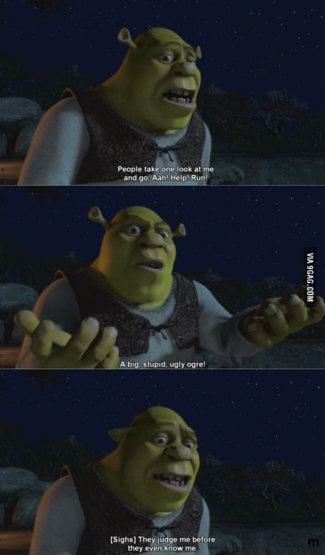 Shrek Quotes Amazing Shrek Was So Deep To Understand As A Kid  Pinterest  Shrek