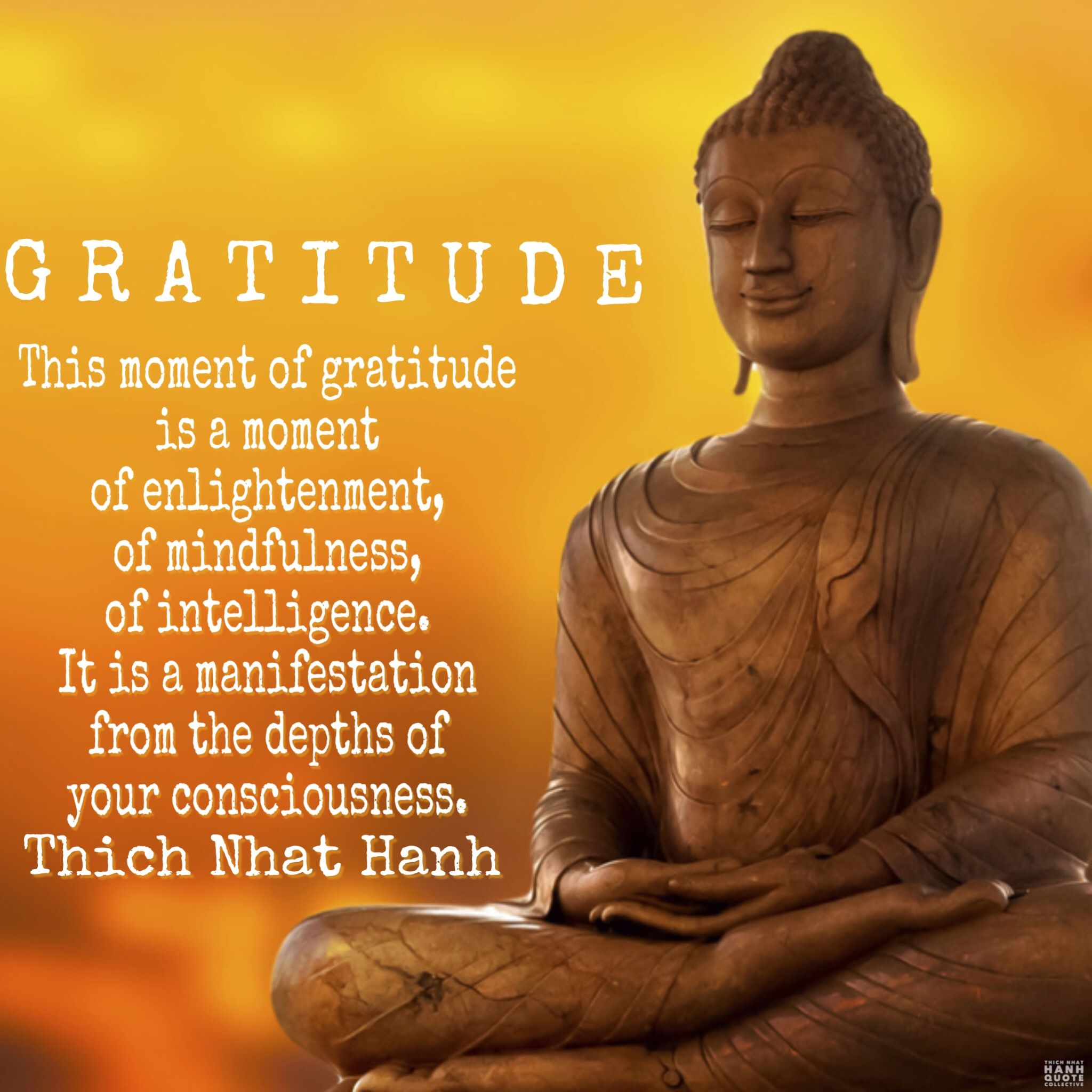 Image result for thich nhat hanh quotes on gratitude