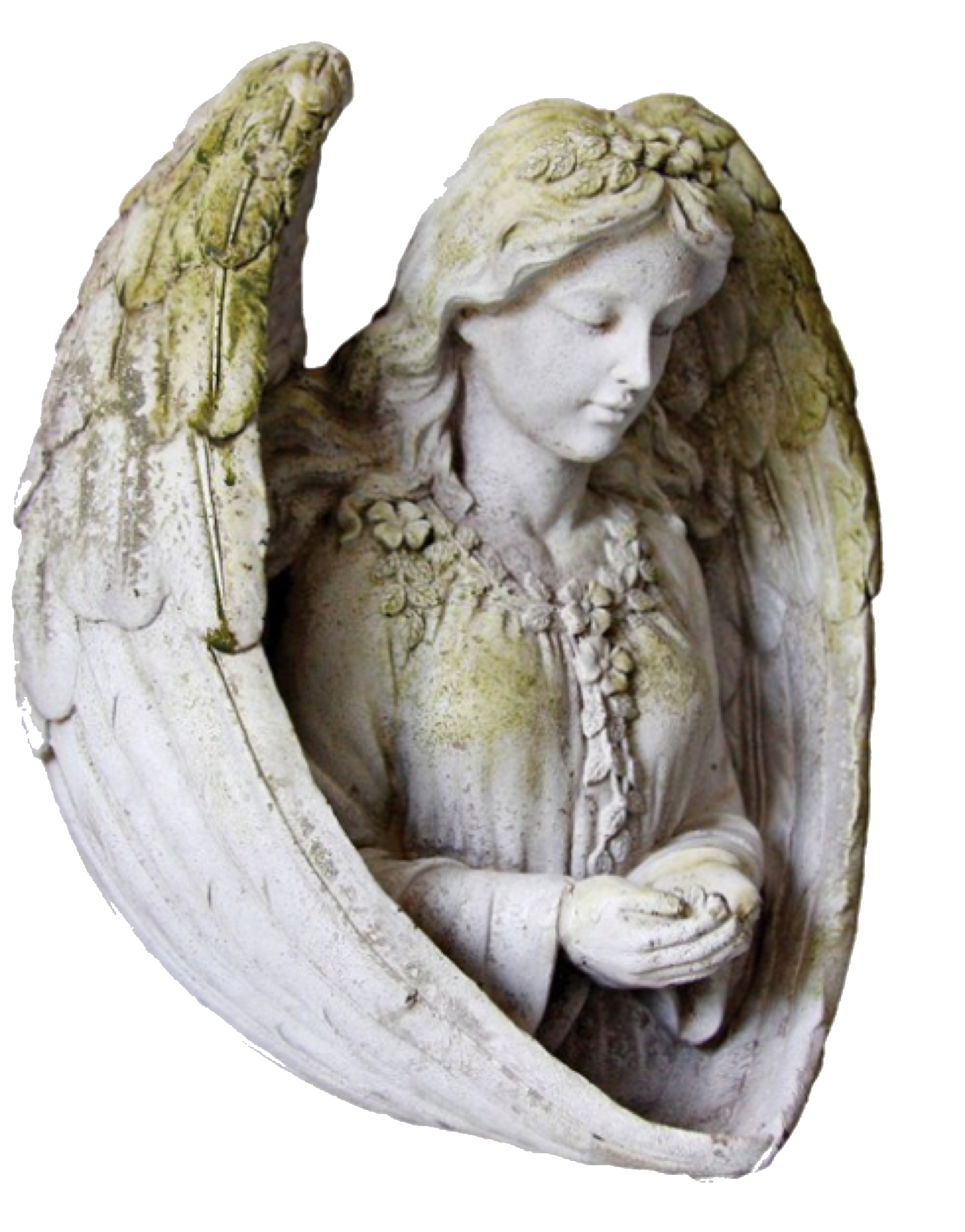 Pin By On Moodboard Pngs Cherub Sculpture Statue Angel Statues