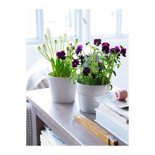 Or dd vaso ikea interior vidrado torna o vaso imperme vel - Plantas interior ikea ...