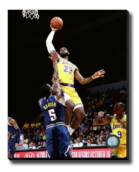 6b3e2a3ad LeBron James Los Angeles Lakers Dunk NBA Licensed Photo Print
