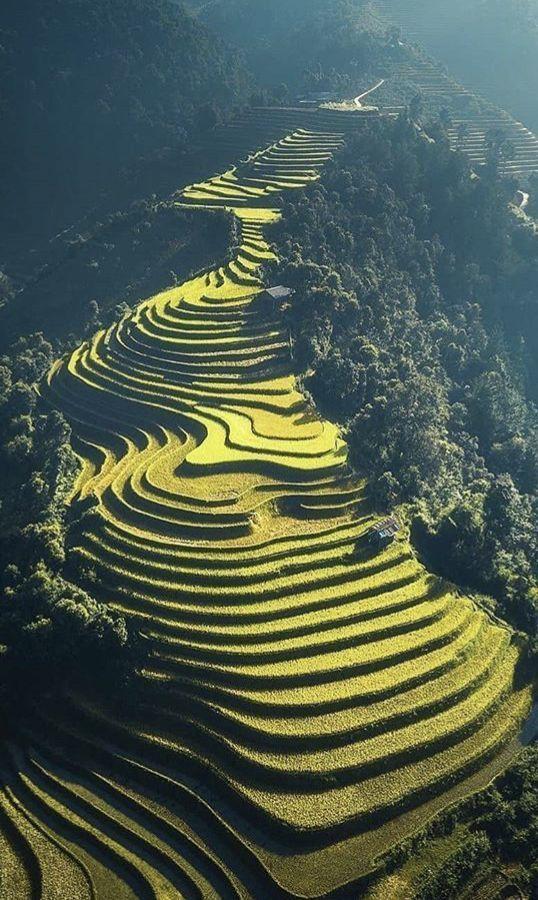 Dreamy Sapa in Vietnam 🔥🔥 #travel #travelguide #traveltips #vietnam #sapa