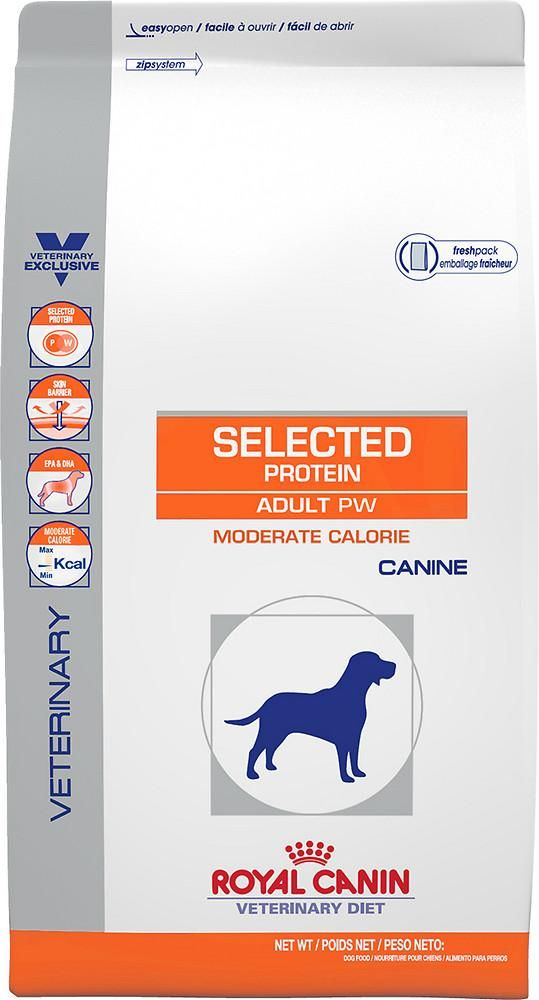 Pin On Loving Pet Care Tips For Dogs Cats Grain Free Recipes Products