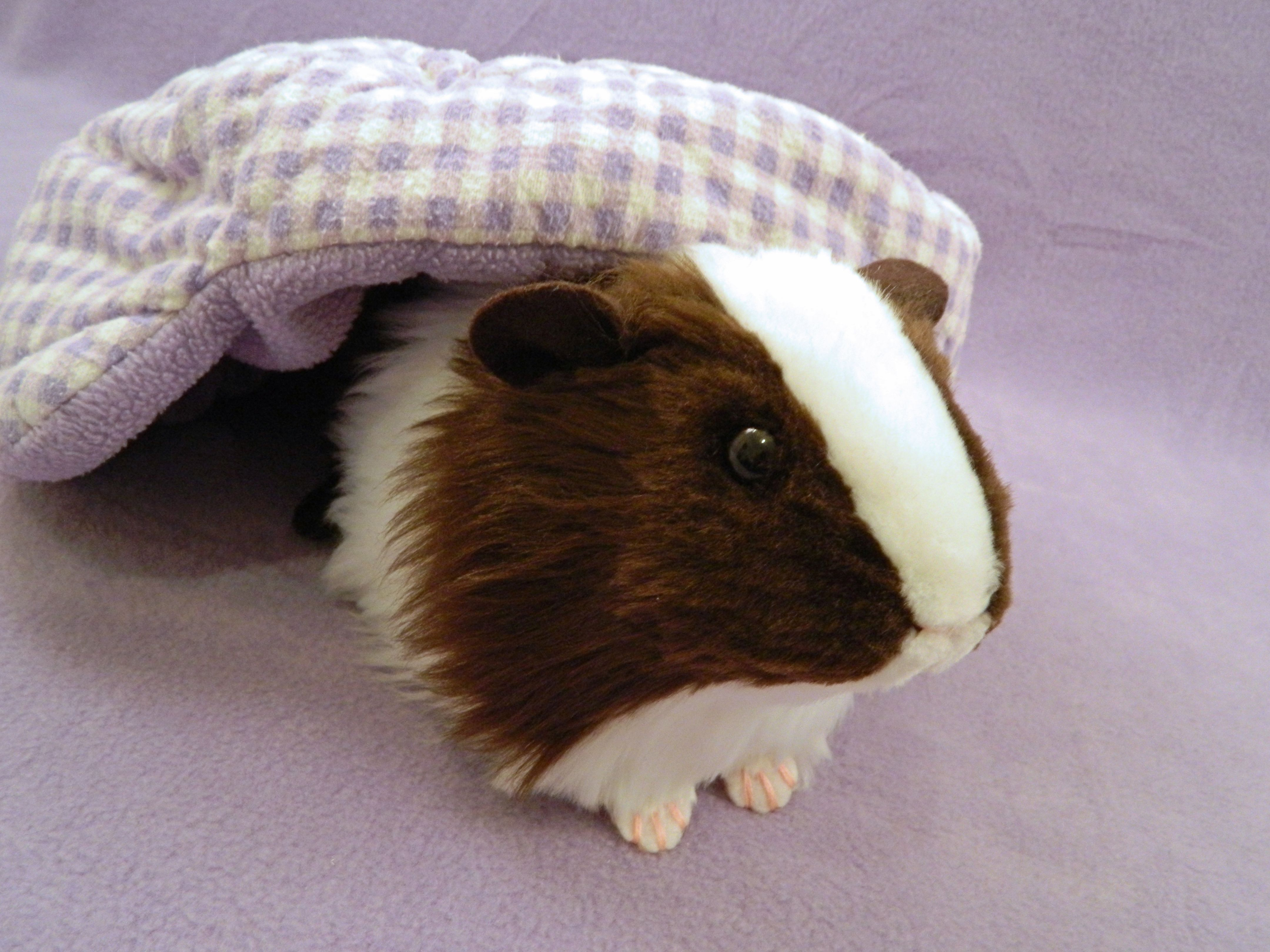 7 Inch Lovely Brown /& Black Guineapig//Guinea Pig Soft Plush Toys Guinea Pig