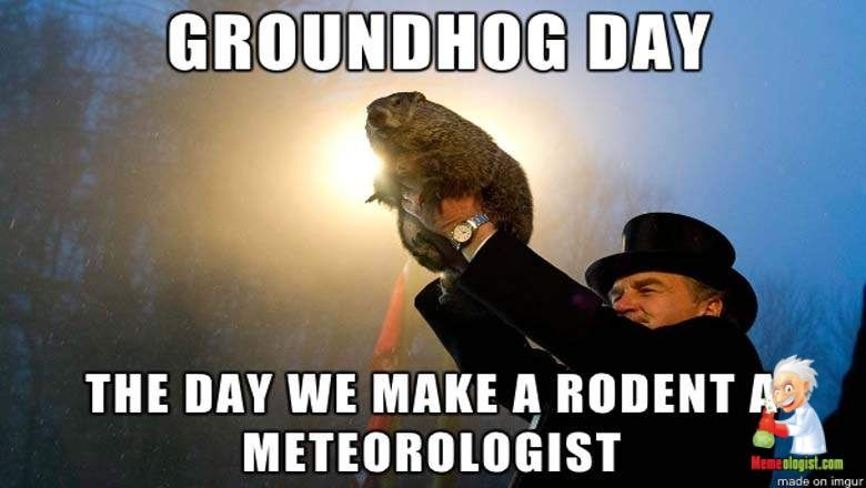 Funny Groundhog Day Memes Groundhog Day Groundhog Funny Animal Memes