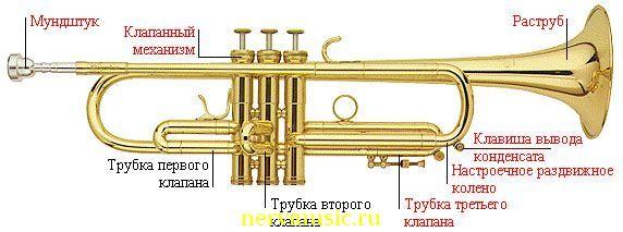 Труба | Музыкальная энциклопедия от А до Я | Музыкальные инструменты |  Саксофоны, Трубы, Музыкальные инструменты