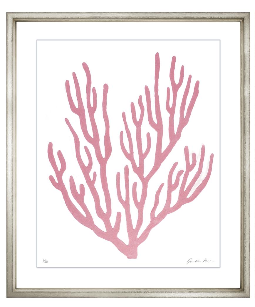 Charlotte morgan pink velvet framed coral wall art viii wall art