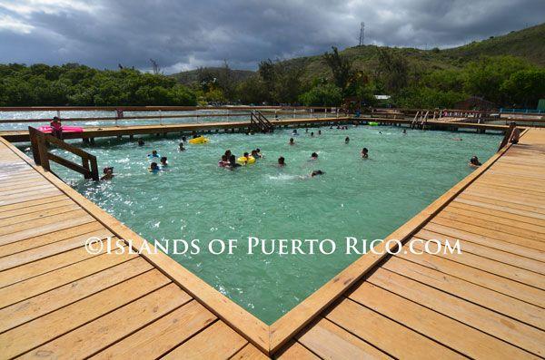 Lajas playa rosada piscina natural y playa information for Piscina natural de puerto santiago