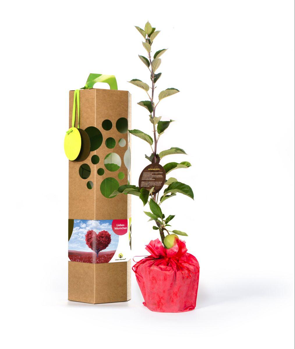 Liebesbaumchen Liebesgeschenk In 2021 Liebesbaum Geschenke Liebesgeschenke