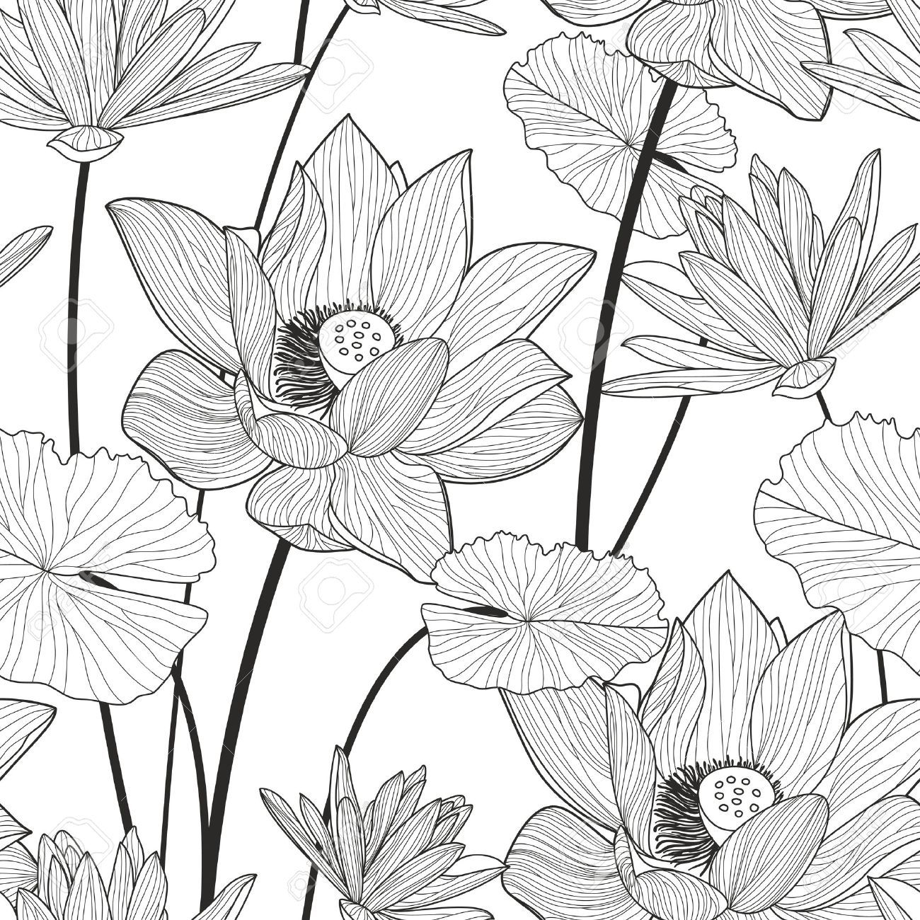 Stock Vector in 2020 Lotus art, Lotus flower art, Plant