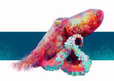 displate octopus - Google Search | Displate thumbnail