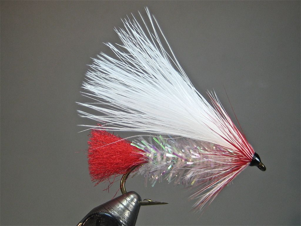 Jack Frost Variation Fly Tying Patterns Craft Fur Squirrel Tail