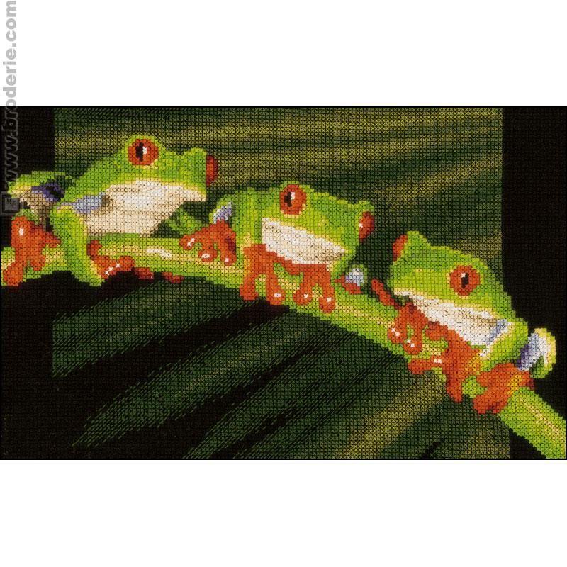 Broderie point de croix grenouilles aux yeux rouges - Maison du canevas broderie ...