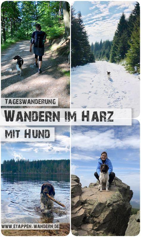 Wandern im Harz - Touren, Bilder, Stempelstellen und Eindrücke