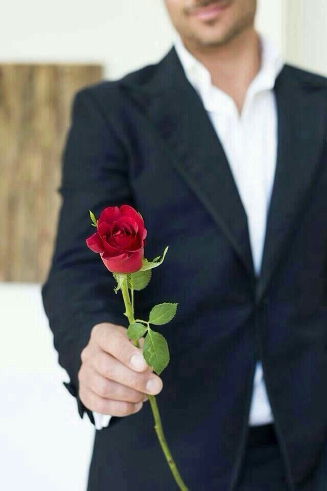 hand her a single rose before giving her the bouquet | be my V ...