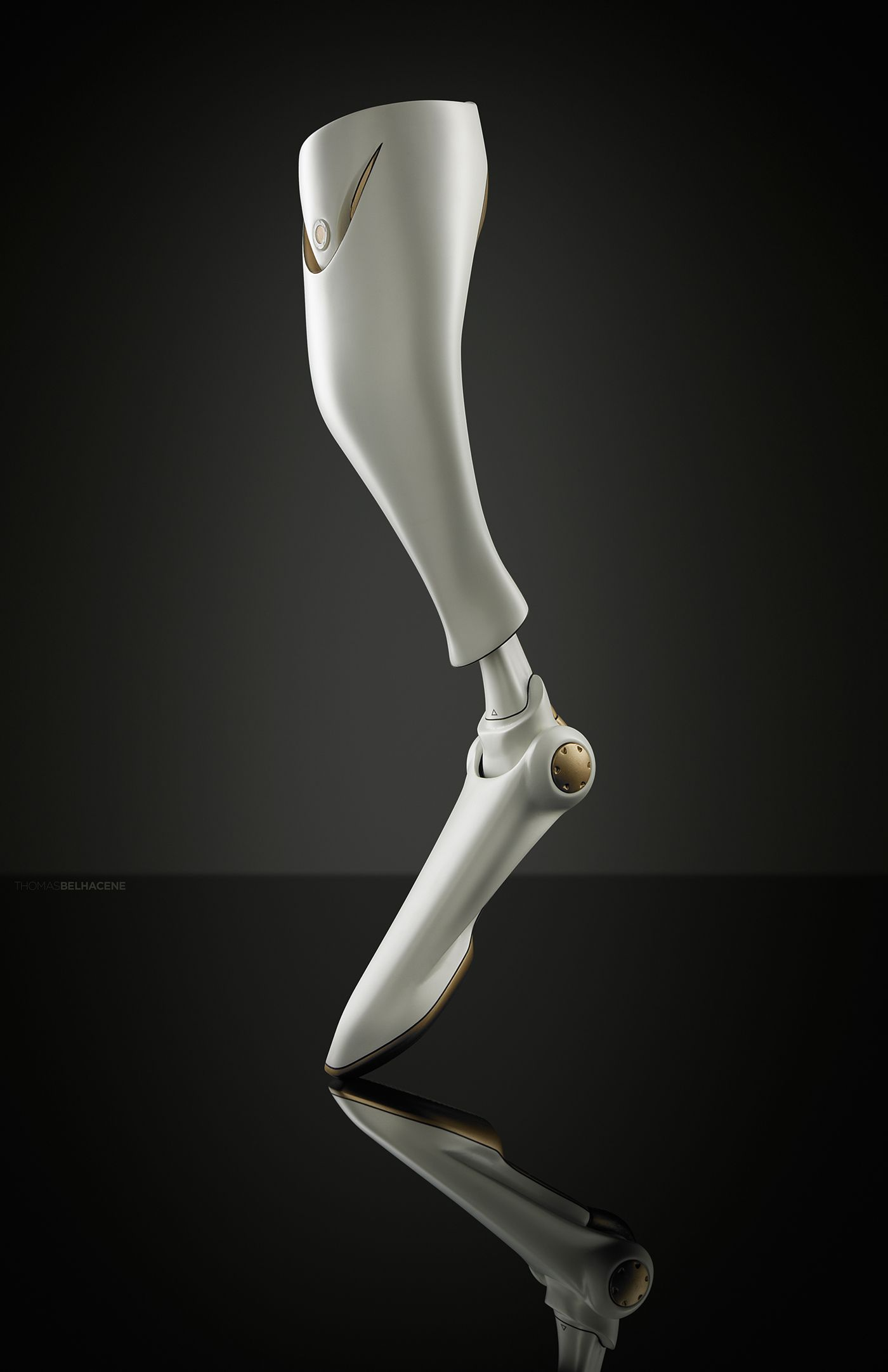 define prothesis prosthetic Aopa (american orthotic and prosthetic association): founded in 1917, the american orthotic & prosthetic association is a national trade association committed to providing high quality, unprecedented business services and products to o&p professionals.