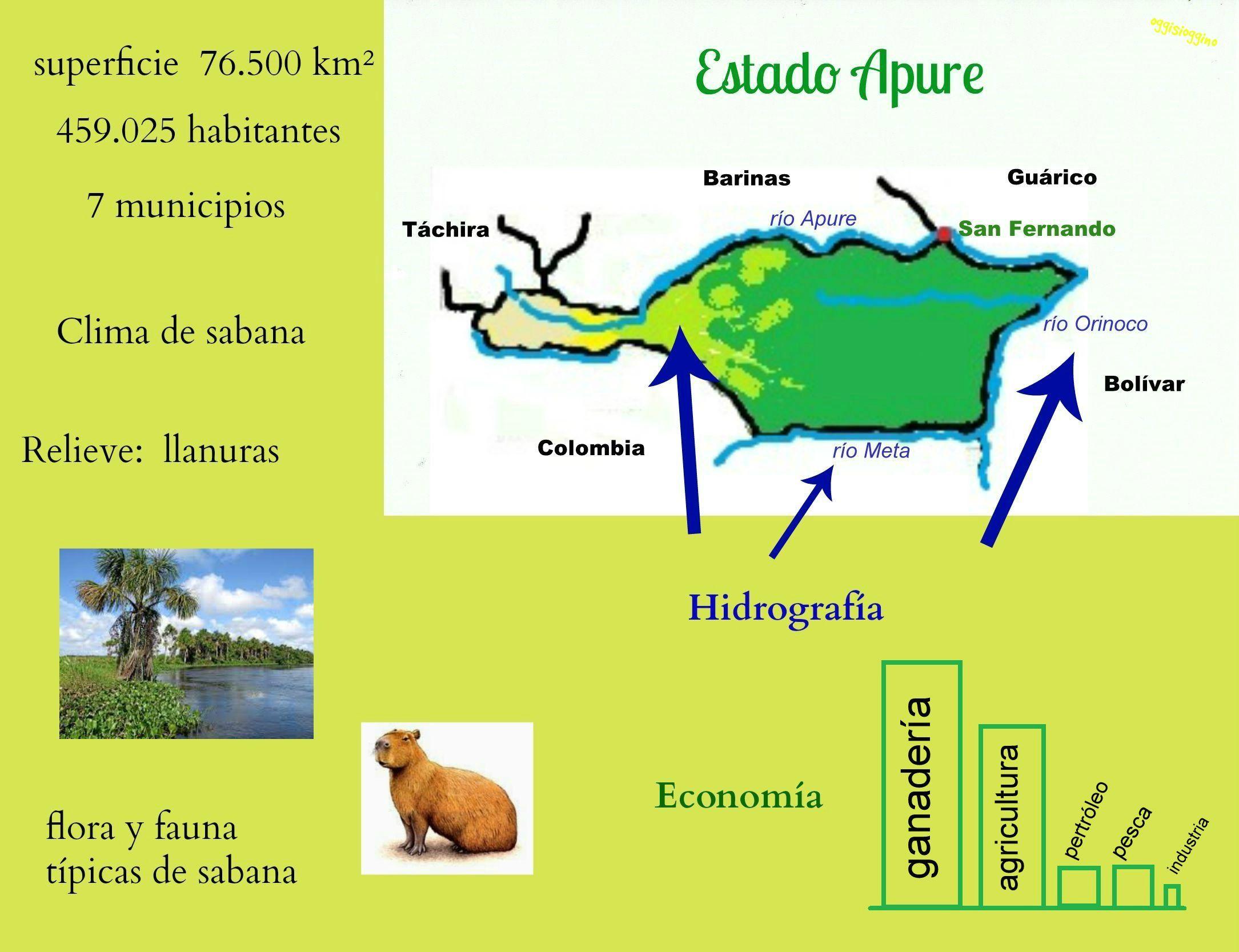 La región de los llanos y la llanura deltaica (Geografía de Venezuela) |  Geografía, Venezuela, Regiones