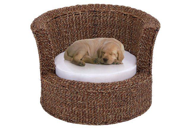 Rattan Pet Bed Brown Nebraska Furniture Mart Beautiful Dogs Pets