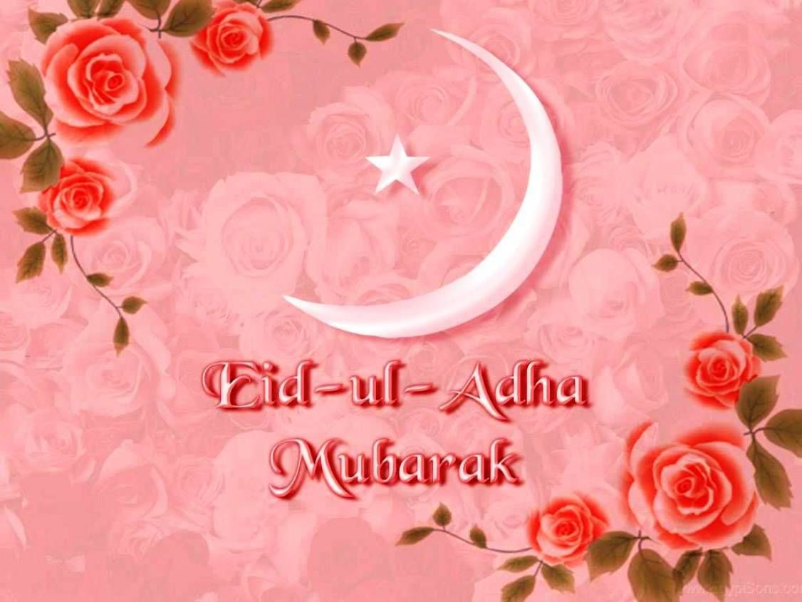 Happy Bakra Eid Eid Ul Adha Mubarak Hd Photos Wallpapers