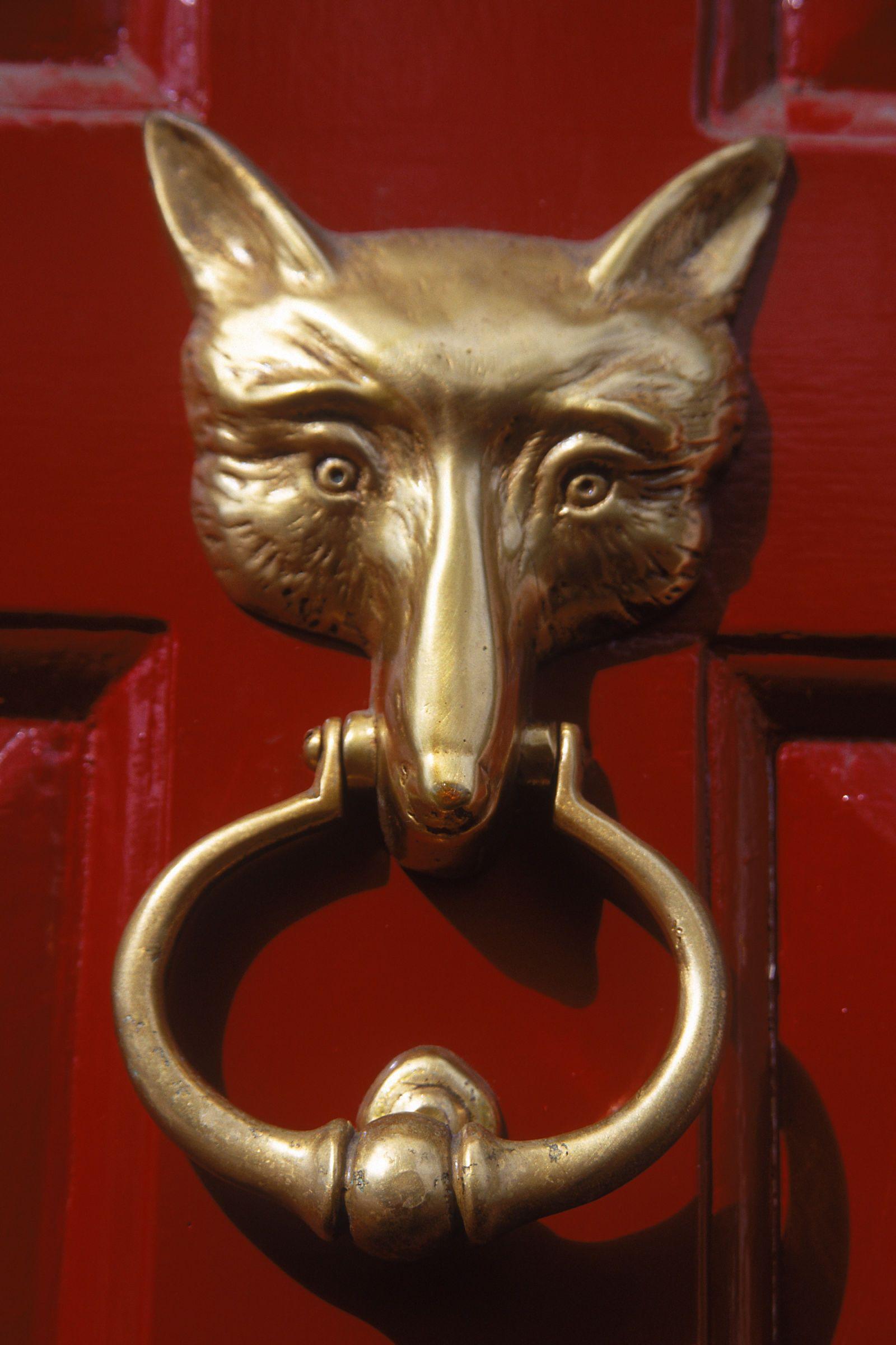 Details about  /Large Brass Fox Door Knocker