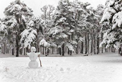 """""""Snowmen"""" by Agha Shahid Ali"""