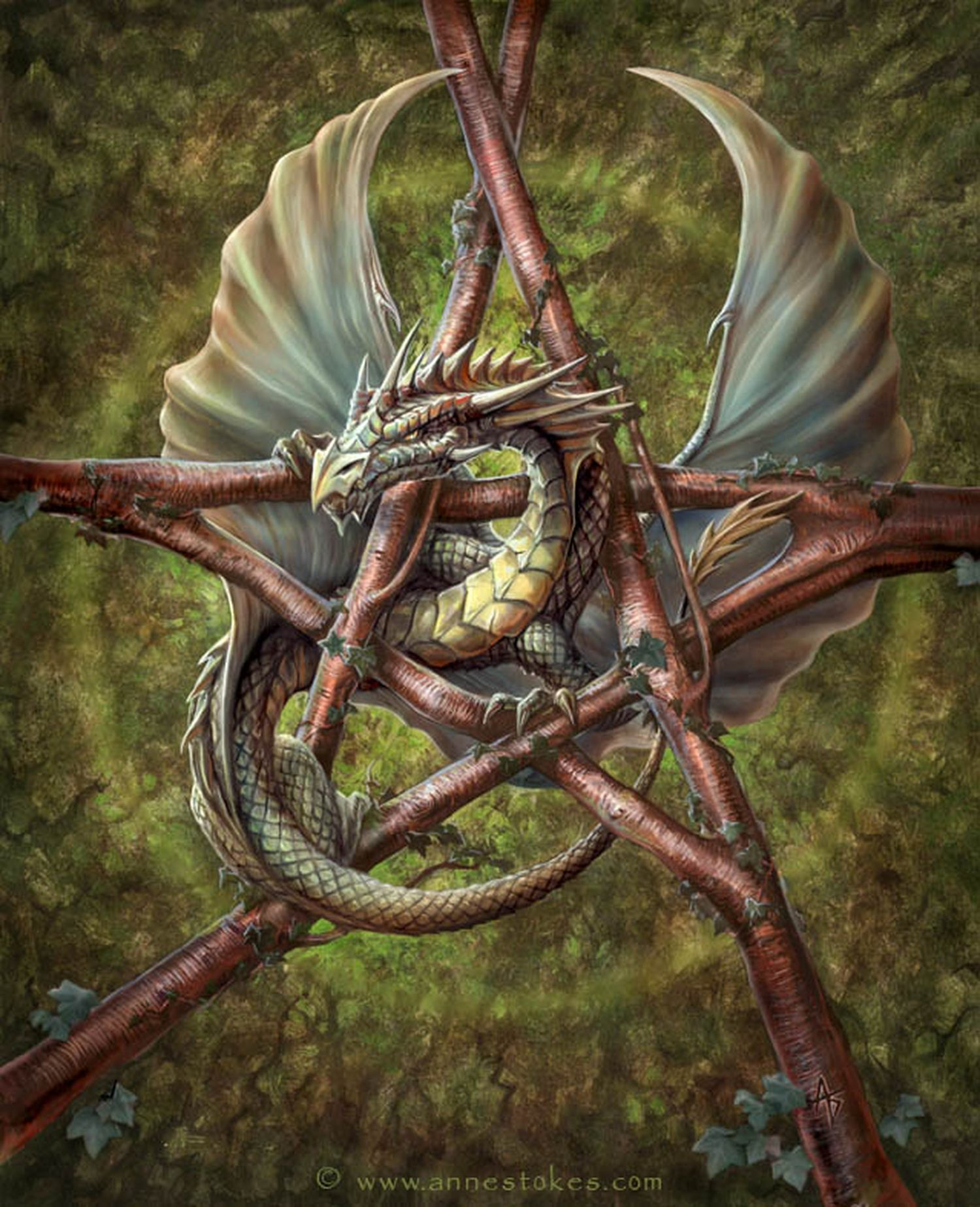 Forest Dragon Pentagram By Anne Stokes