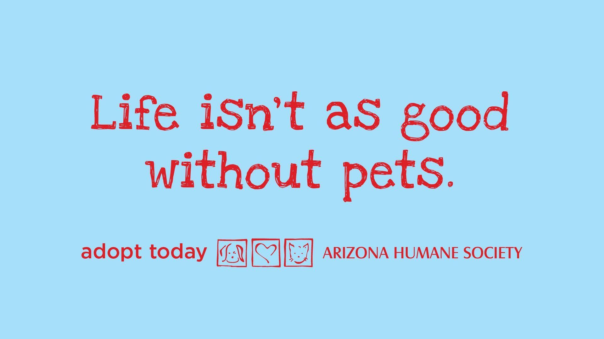 Humane Society Humane Society Animal Quotes Prayer Poems