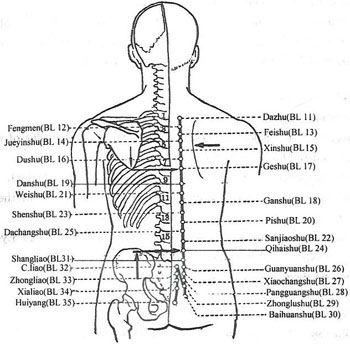 12 puntos de acupresión eficaz para aliviar la cadera y el dolor de ...