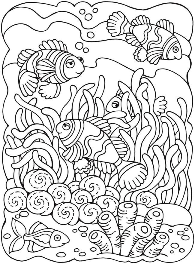wwwdoverpublicat   dover  designs coloring