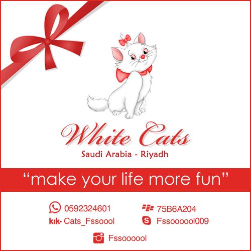فالك طيب دعاية إعلان إعلانات تسويق تسوق الرياض قطط قطة قطوه بس أبيض بيضاء كات عروض تخفيضات Ad Ads Riyadh Saudi Ksa White Cats Fun More Fun