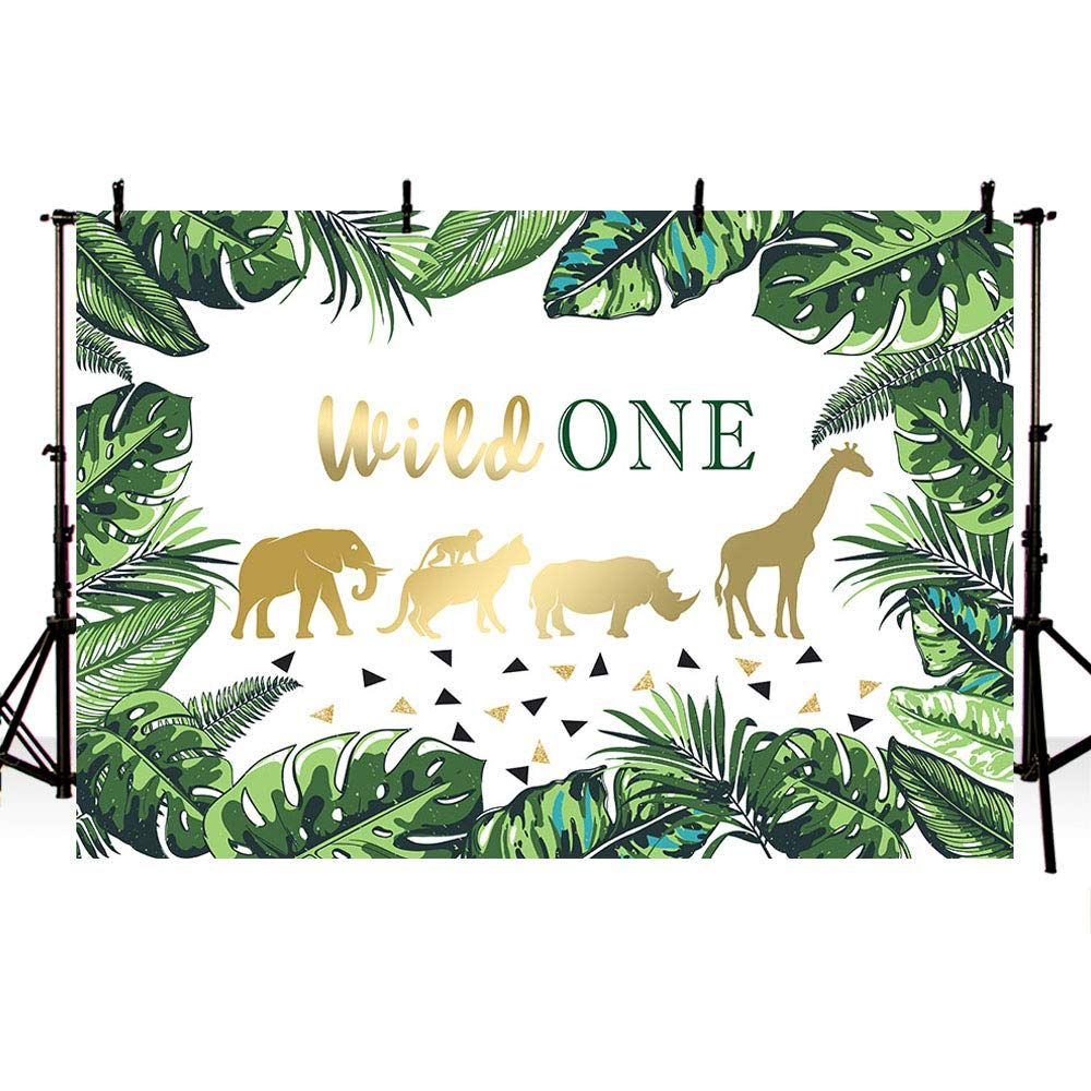MEHOFOTO Wild One Themed 1st Birthday Party