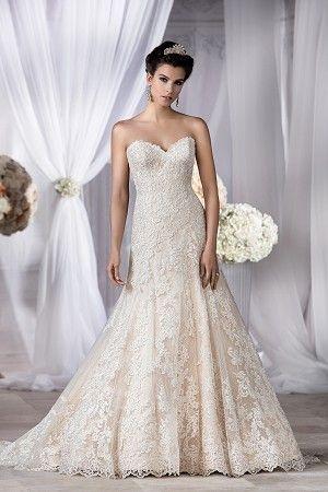 T182054 | Jasmine Bridals | Pinterest | Jasmine, Jasmine bridal and ...