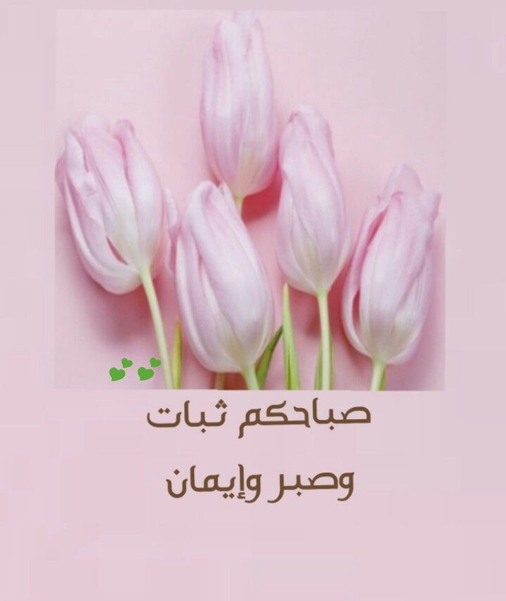 صباحكم صبر وثبات و ايمان Garlic Wallpaper Vegetables