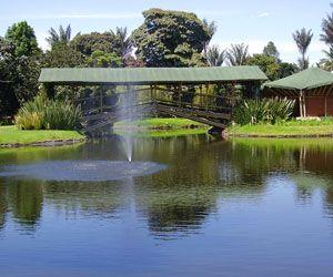 Jardín Botánico José Celestino Mutis | lugares soñados y mas ...