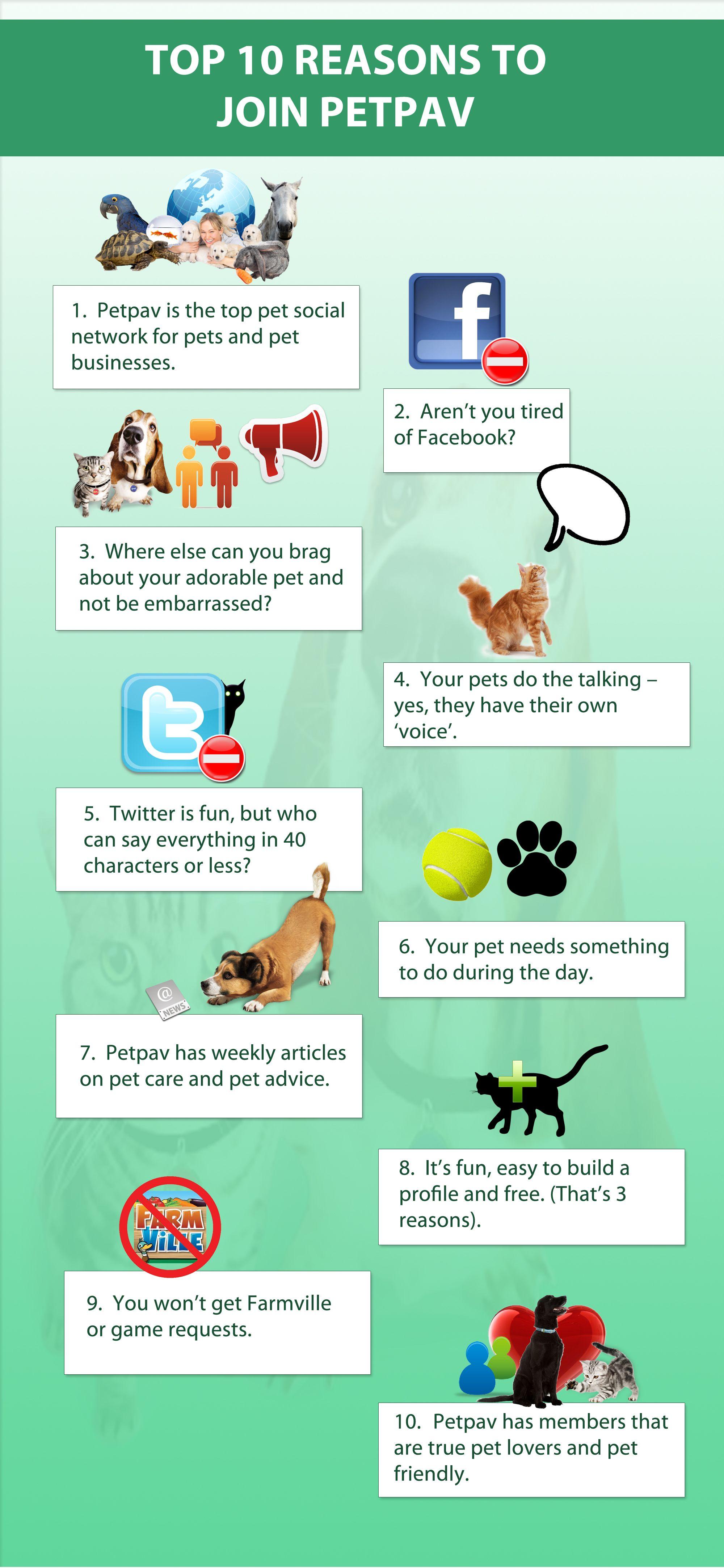 10 Reasons To Join Petpav Http Www Petpav Com Pet News 367 Top 10 Reasons To Join Petpav Pet Businesses Pet News Pets