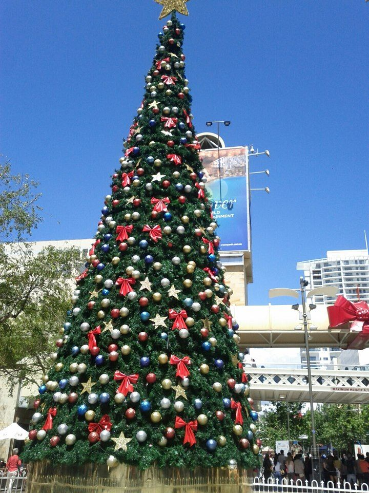 christmas tree in perth nearly the month of december - What Month Is Christmas In Australia