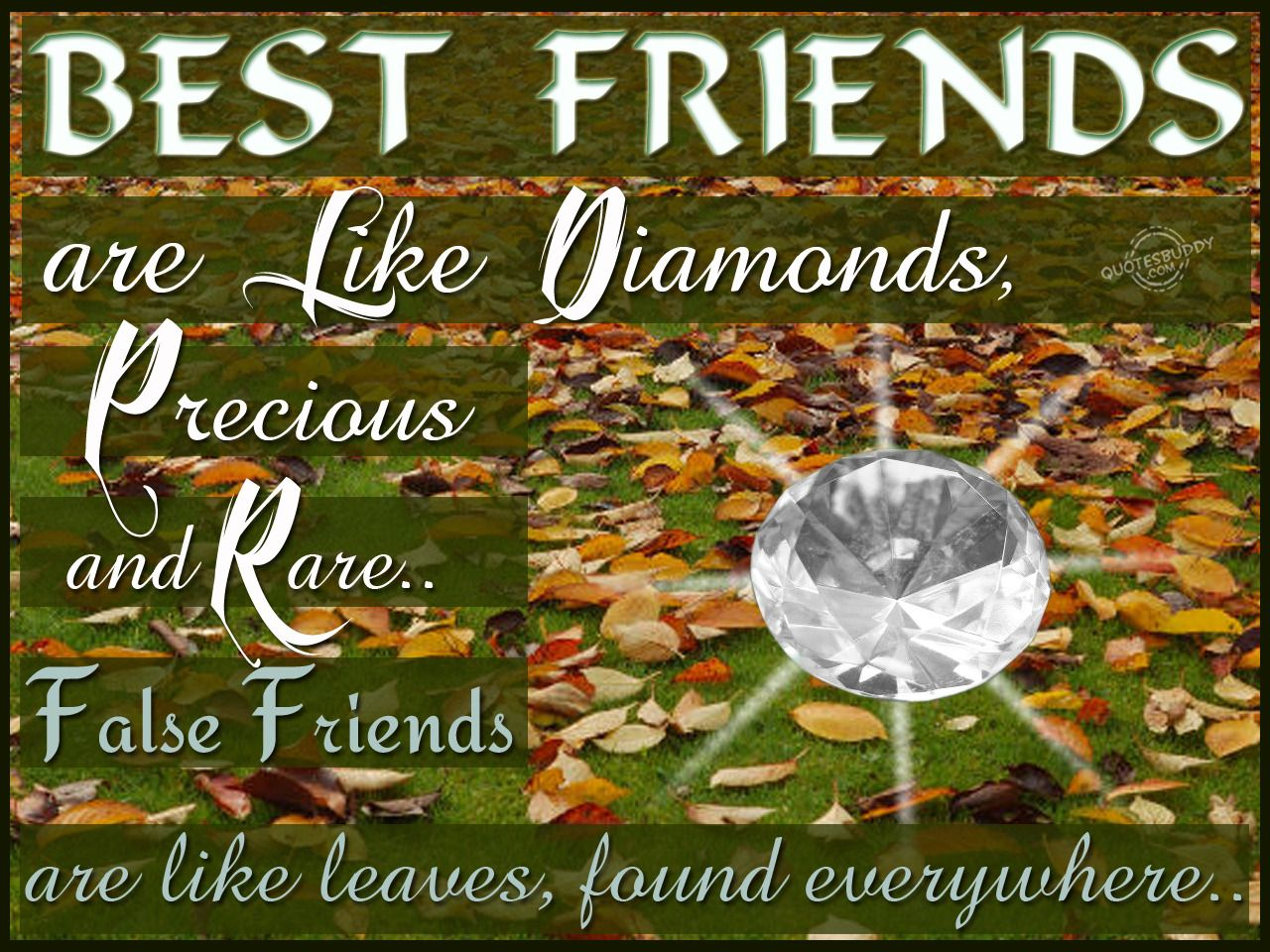 Delicieux Check Out Rare Friendship From Best Friend Quotes