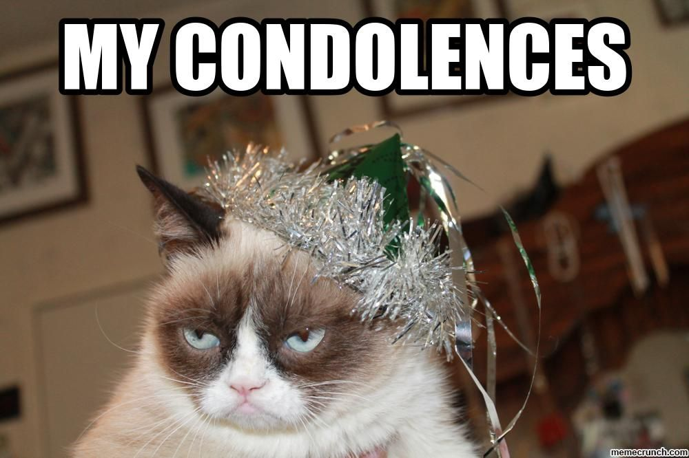 Image result for my condolences meme funny Grumpy cat