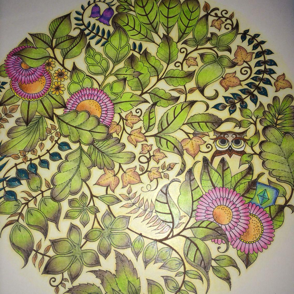 Completed Owl Mandala Enchanted Forest Enchantedforest Joannabasford Colouring